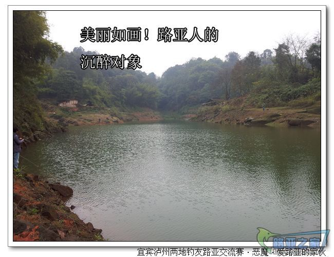 nEO_IMG_20111224_134518.jpg