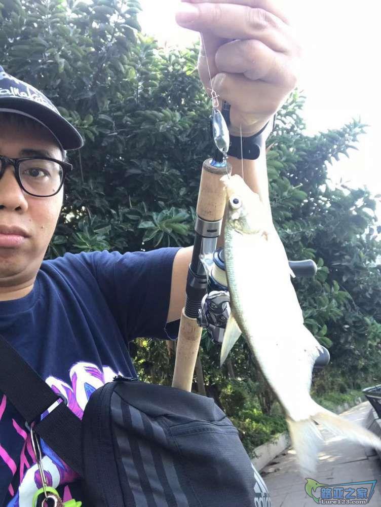 难得有鱼!
