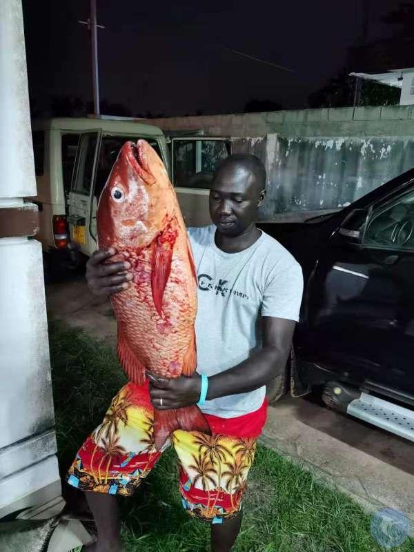 保安已经习惯了每周六晚上我带鱼回家