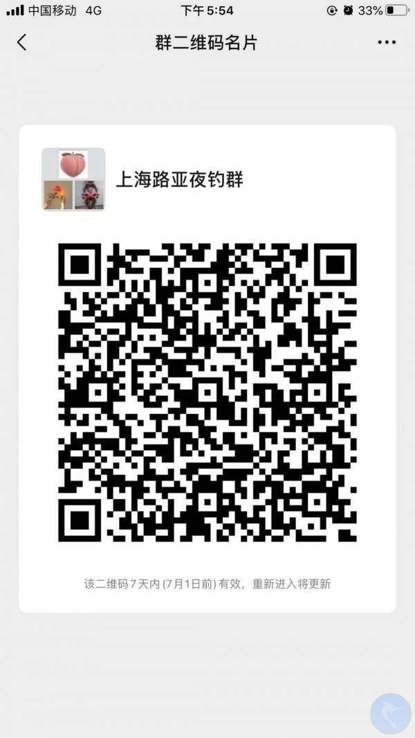 上海路亚微信群